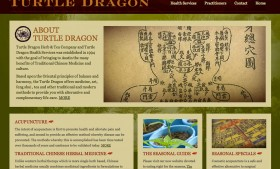 Turtle Dragon Health Services